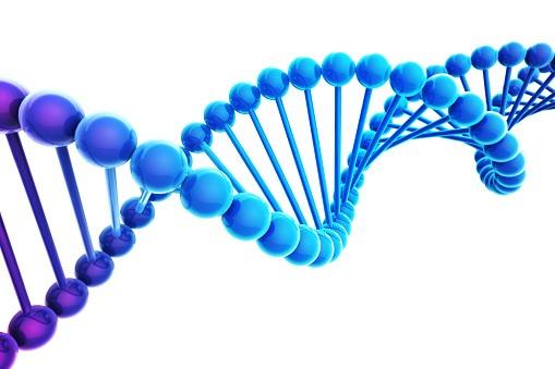 [DNA+strand%5B6%5D]