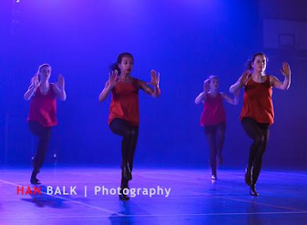 Han Balk Voorster Dansdag 2016-2969.jpg