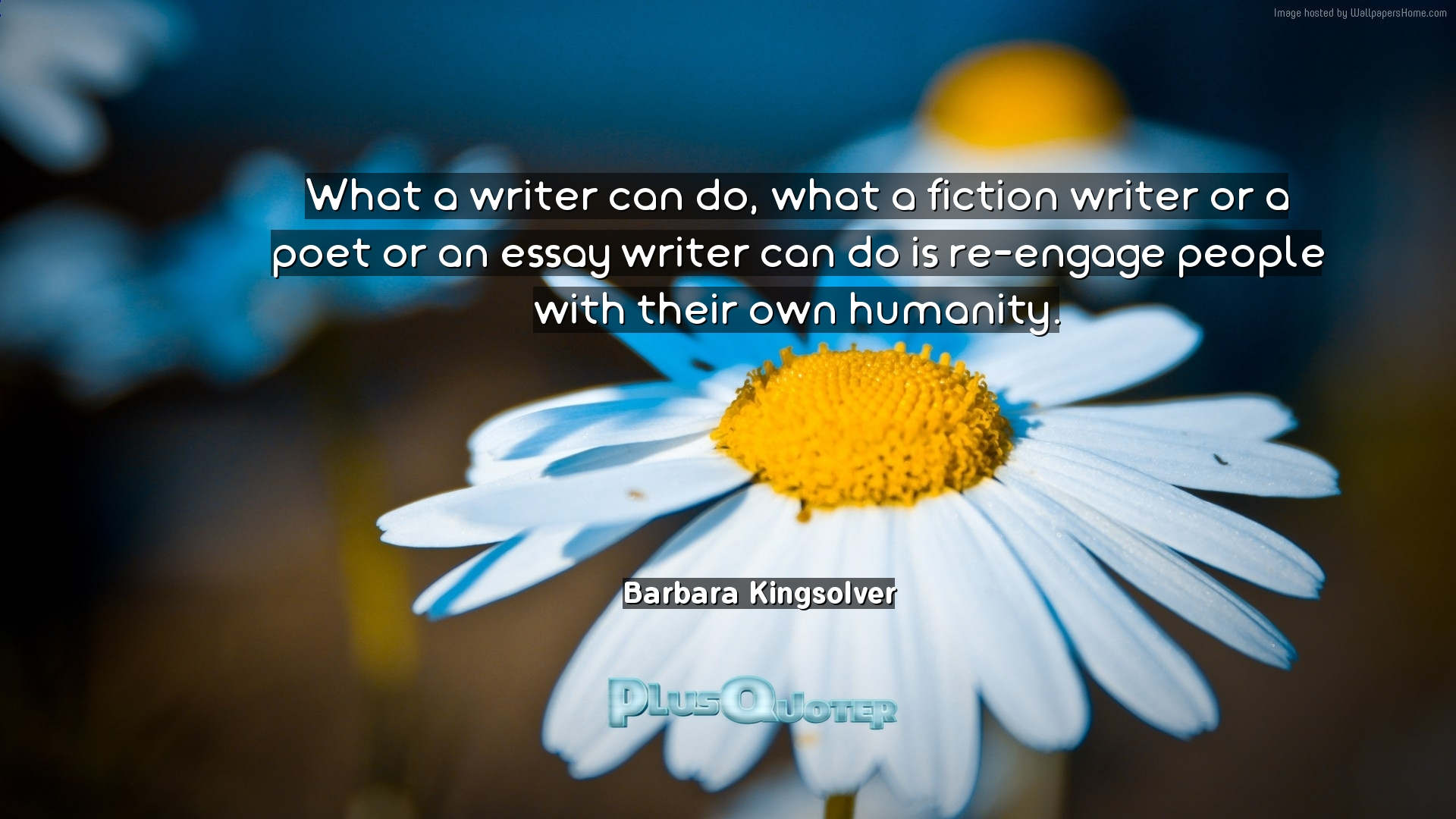 what a writer can do what a fiction writer or a poet or an essay   inspirational quotes what a writer can do what a fiction