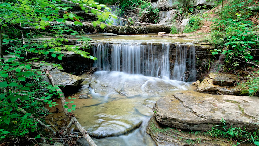 Cascade, Ozark Mountains, Arkansas.jpg