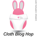 cloth diaper blog hop