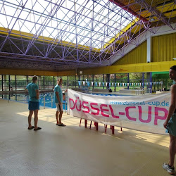 DüsselCup 2014