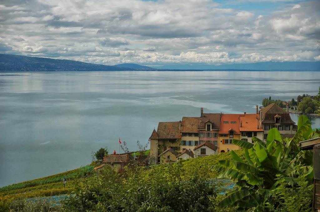 Wine tasting po szwajcarsku