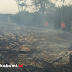 Kandang Ayam PT Jaffa Comfeed di Parungkuda Terbakar
