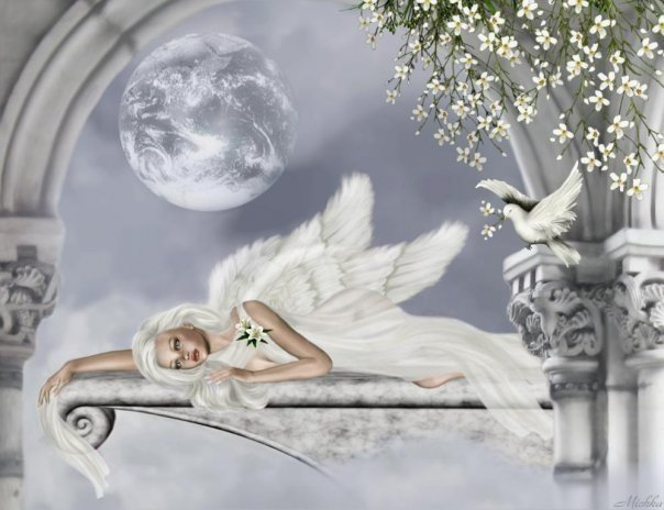 White Angel And A Dove, Angels 1