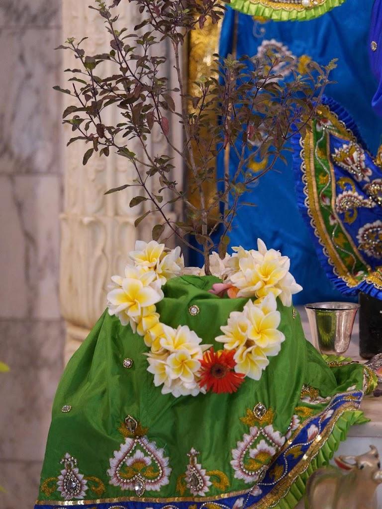 ISKCON New Govardhana Deity Darshan 09 Dec 2015 (27)