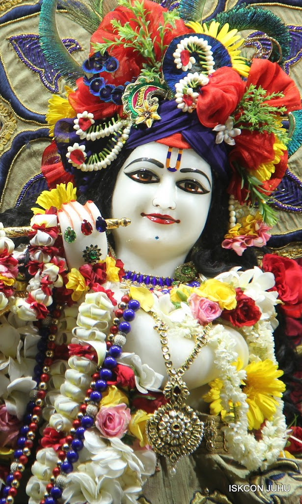 ISKCON Juhu Sringar Deity Darshan on 24th June 2016 (16)