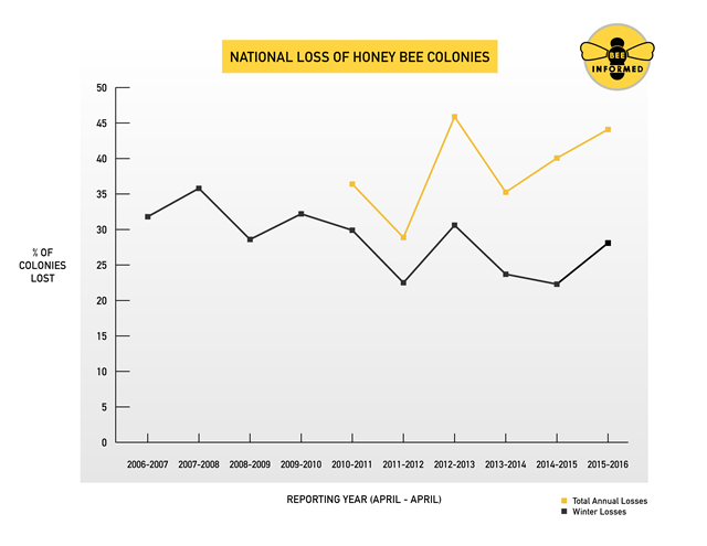 U.S. national loss of honey bee colonies, 2006-2016. Graphic: Bee Informed Partnership / University of Maryland