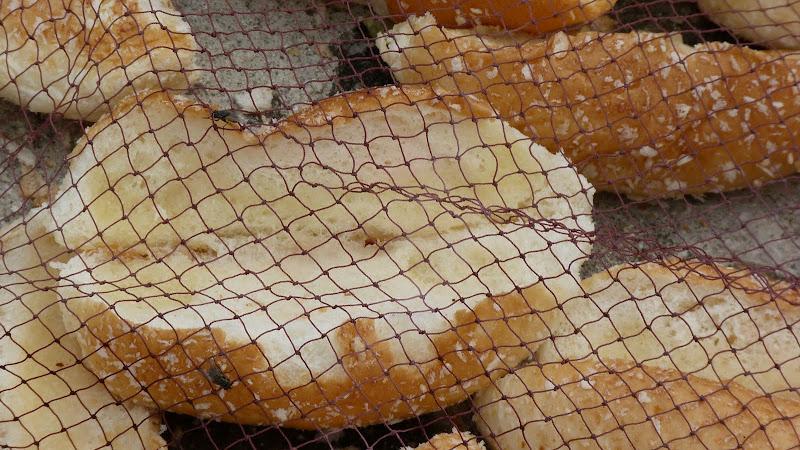pain probablement pour appâter