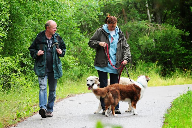 20130623 Erlebnisgruppe in Steinberger See (von Uwe Look) - DSC_3696.JPG