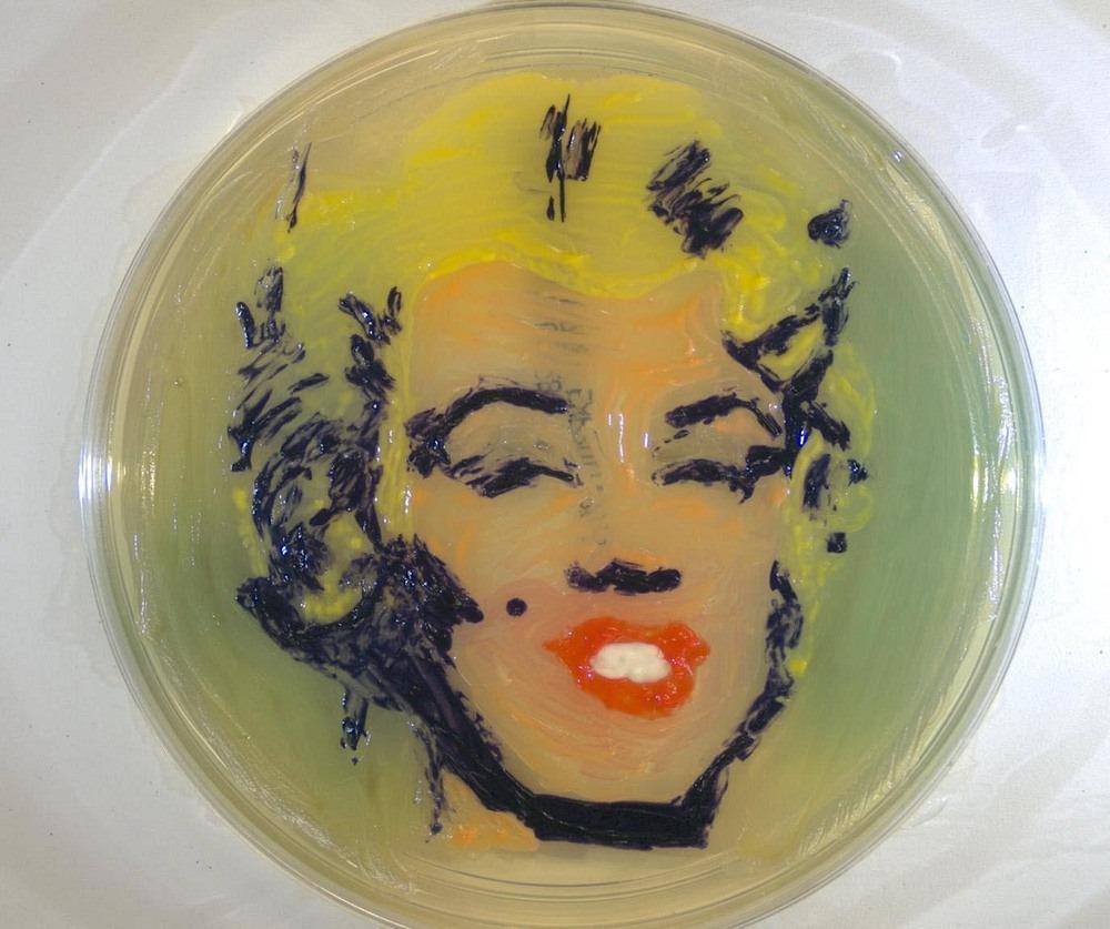 microbial-art-1
