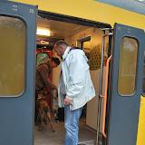 KNON-honden in Emmen - DSC_0764.JPG