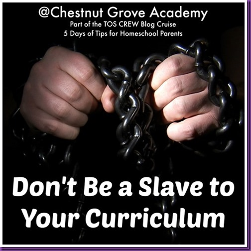 Slave to the Curriculum_thumb[1]