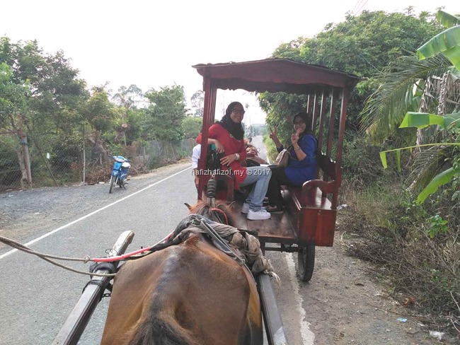 menaiki kereta kuda di sg mekong