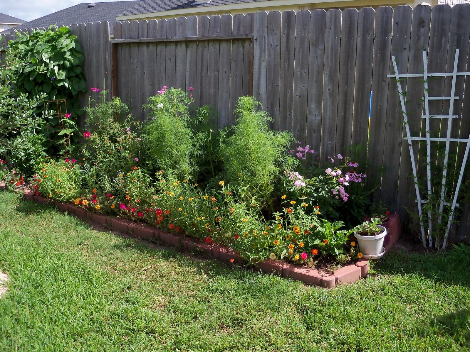 Gardening 2010, Part Three - 101_3664.JPG