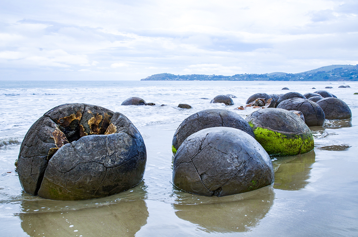 紐西蘭南島 Oamaru Moeraki Boulder 恐龍蛋 大圓石