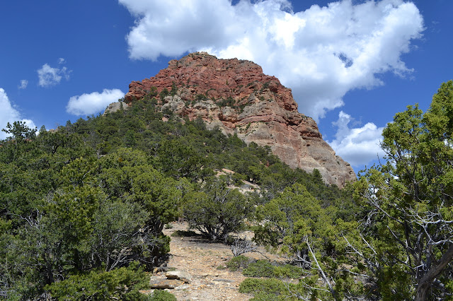 lump of red rock in greenery