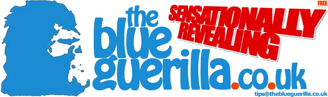 TheBlueGuerilla