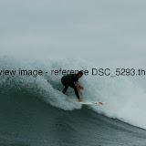 DSC_5293.thumb.jpg