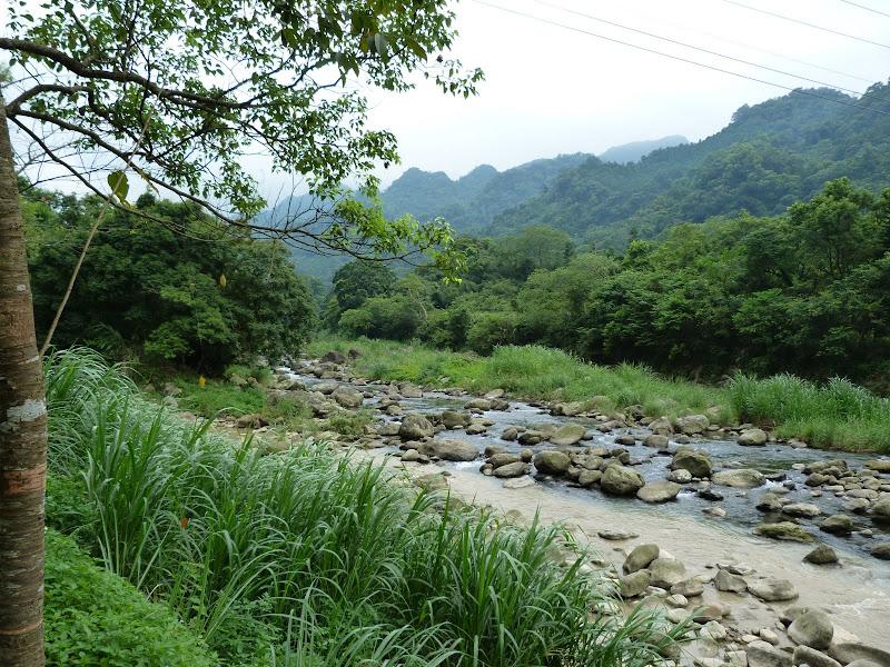 TAIWAN.Dans la région de Miaoli - P1080379.JPG