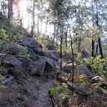 Around the hillside (203368)