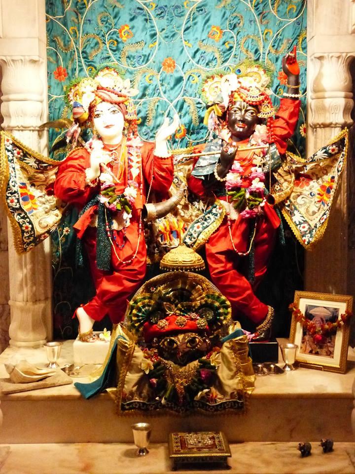 ISKCON New Govardhan Deity Darshan 12 Mar 2016 (5)