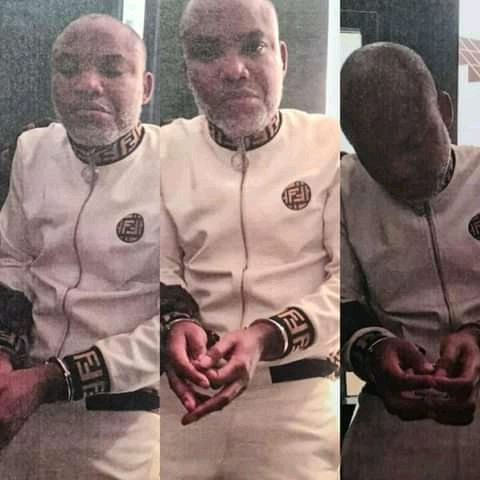 Nnamdi Kanu Was Dragged Into The Court In Chains, His Face Was Covered -Witness