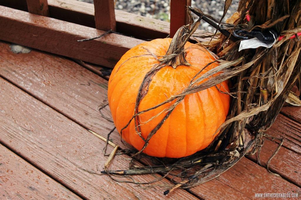 [pumpkin3%5B10%5D]