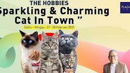 #EventPekanIni: Komunitas Cat Lovers akan Gelar Banda Aceh Cat Show 2021, Ini Jadwalnya
