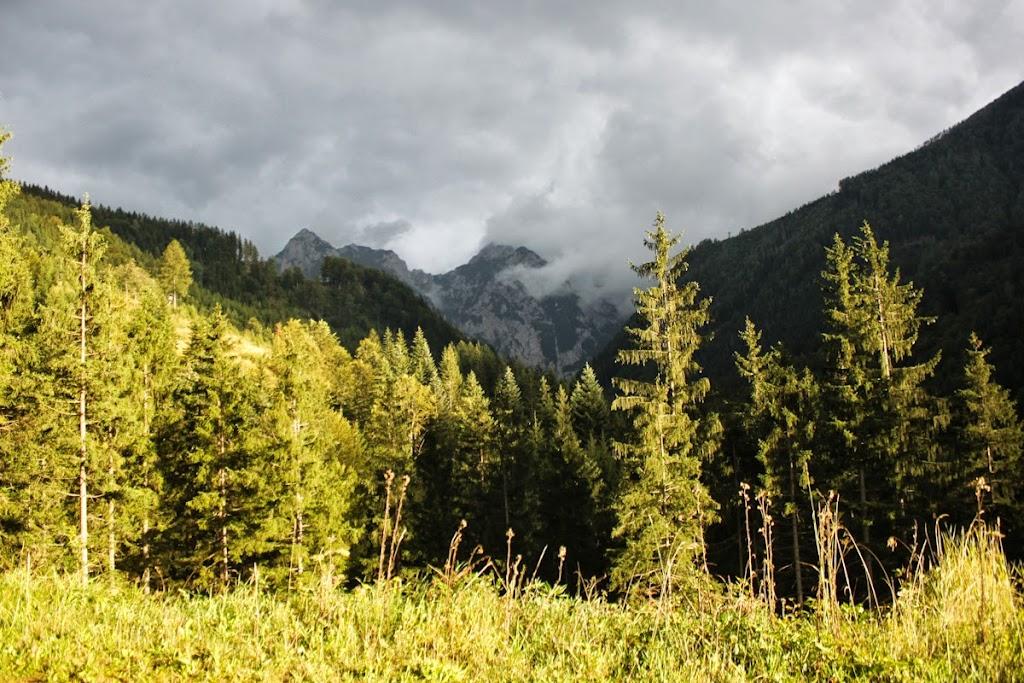 Logarska dolina - Vika-9095.jpg