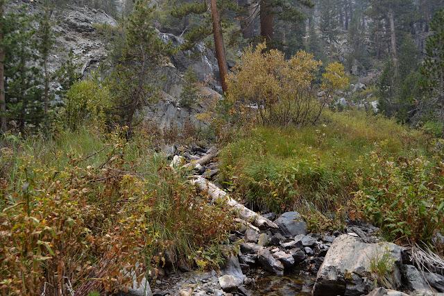 one of a few creeks