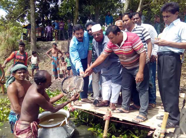 মোশারফগঞ্জ বিলে মাছের পোনা অবমুক্ত অাজ