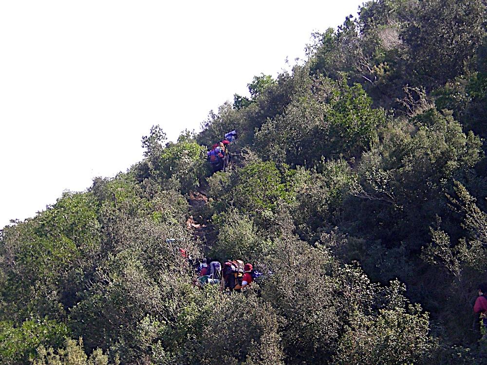 Sortida Sant Salvador de les espasses 2006 - CIMG8384.JPG