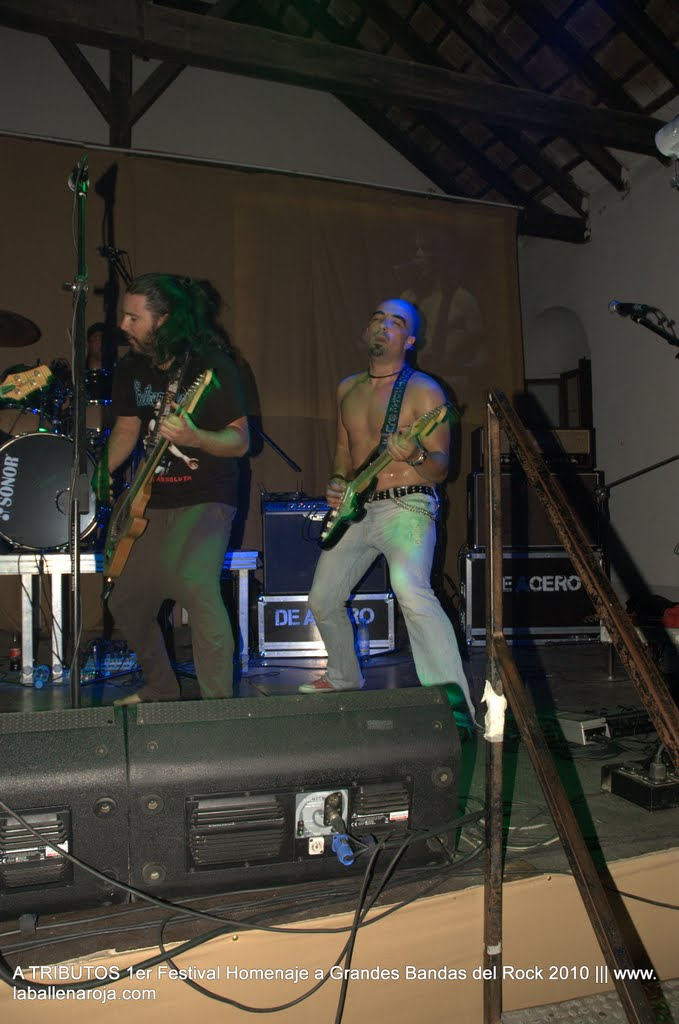 A TRIBUTOS 1er Festival Homenaje a Grandes Bandas del Rock 2010 - DSC_0170.jpg