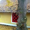 Podzim ve Slatině a jejím okolí