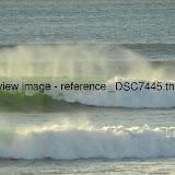 _DSC7445.thumb.jpg