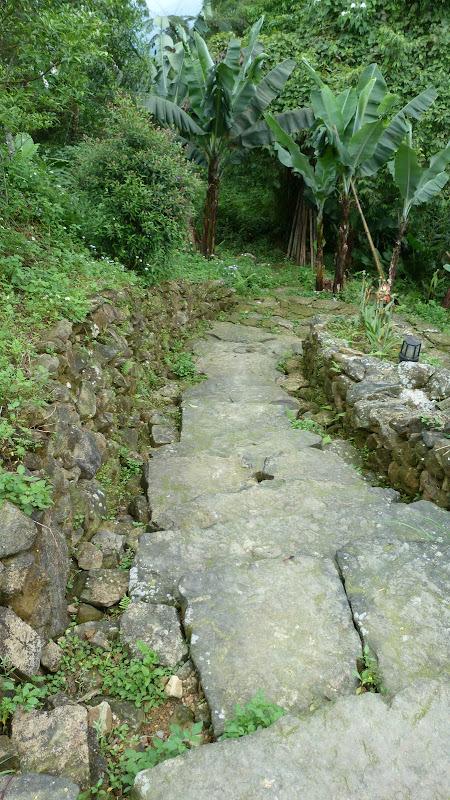 TAIWAN A cote de Luoding, Yilan county - P1130569.JPG