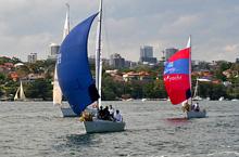 J/24 one-design sailboat- sailing in Sydney, Australia