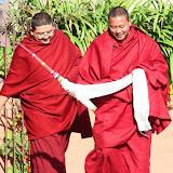 2015年11月19日尊貴的 蔣貢康楚仁波切帶領拉瓦噶舉德千林寺祖古、堪布、洛本及立佩多傑佛學院的學生進行解脫莊嚴寶論研討會第二天(2015年11月18日~ 23日)
