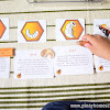 Montessori-Inspired Activity: The Life of a Honey Bee
