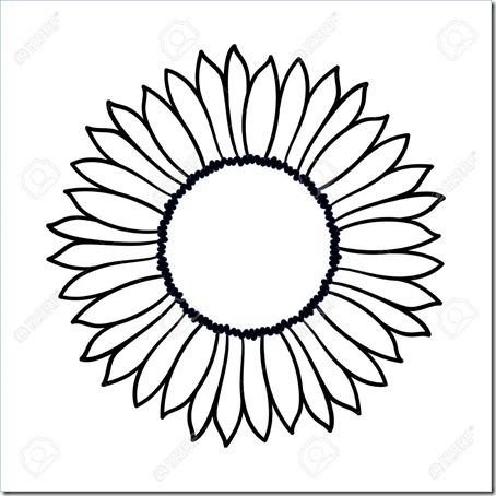 Vector doodle sunflower illustration