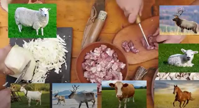 Vikings Ate Horse And Reindeer