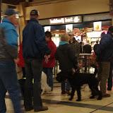KNON puppys in de stad nov 2008 - DSC09021.JPG