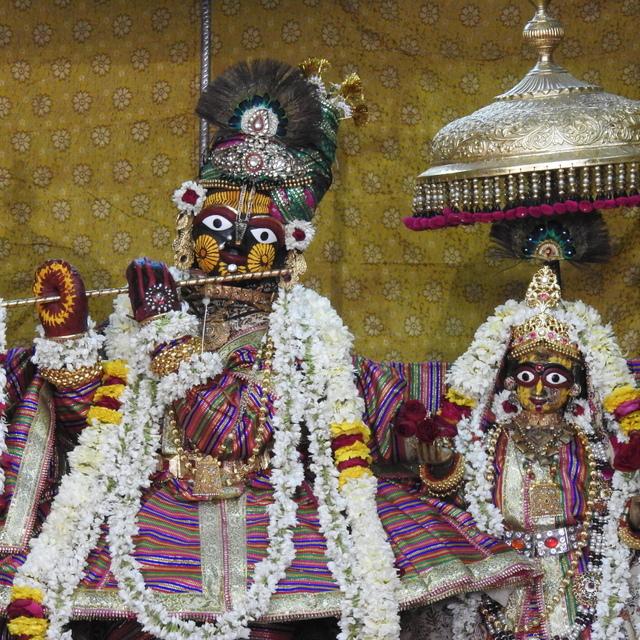 Radha Govind Devji Deity Darshan 02 Mar 2016 (10)