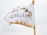 00 A Felvidéki Vágta zászlaja.JPG
