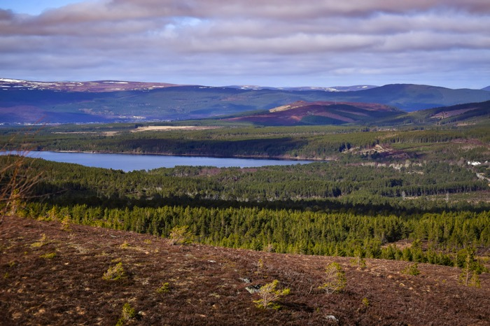 Cairngorm Mountain View
