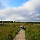 Cubs & Scouts at Country Park June 2014