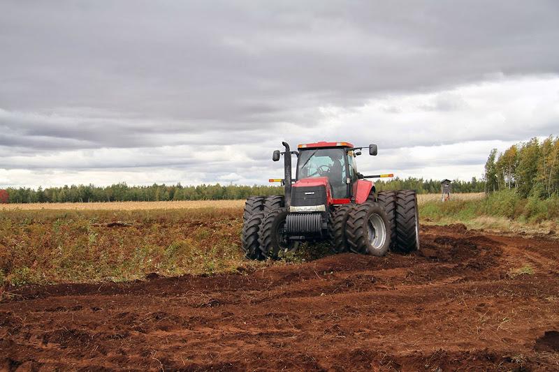 Transformation branchailles en terre agricole - Transformation-de-branchailles-en-terre-agricole-4.jpg