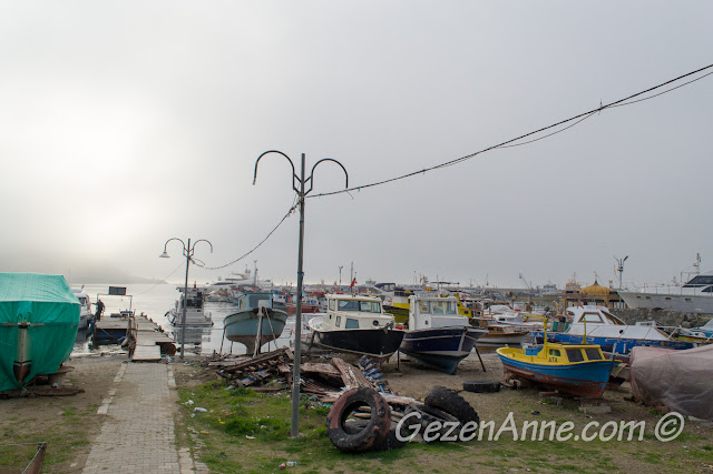 Poyazköy limanındaki tekneler