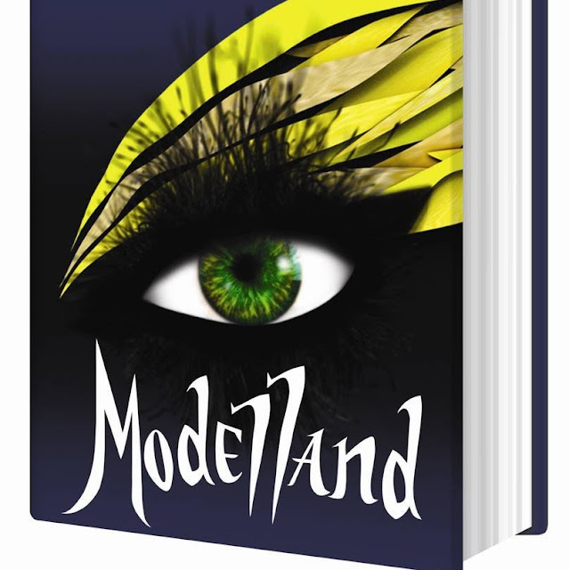Tyra Banks Modelland: Modelland By Tyra Banks